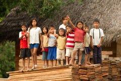 Cabritos de Puni Bocana Fotos de archivo