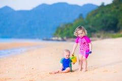 Cabritos en la playa Foto de archivo libre de regalías