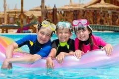 Cabritos en piscina Imágenes de archivo libres de regalías