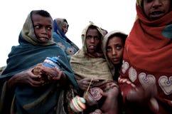 Cabritos etíopes Imagenes de archivo