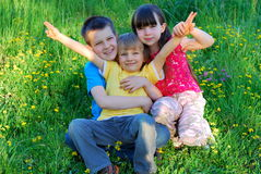 Cabritos felices Foto de archivo libre de regalías