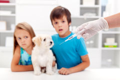 Cabritos preocupantes con su animal doméstico en el veterinario Fotos de archivo libres de regalías