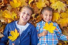 Cabritos que juegan en parque del otoño Fotografía de archivo