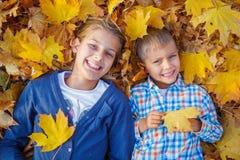 Cabritos que juegan en parque del otoño Imágenes de archivo libres de regalías
