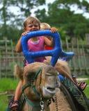 Cabritos que montan en el camello Fotos de archivo libres de regalías