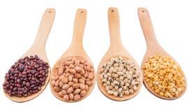 Cacahuete, Bean And Lentils III Imágenes de archivo libres de regalías