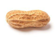 Cacahuete crudo Foto de archivo