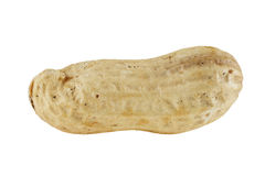 Cacahuete en el fondo blanco Imagen de archivo