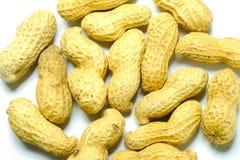 Cacahuete en una textura de la cáscara fondo de la comida de cacahuetes foto de archivo libre de regalías