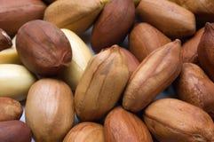 Cacahuetes Imagen de archivo libre de regalías