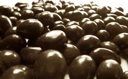 Cacahuetes de chocolate Stock Photography
