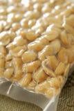 Cacahuetes empaquetados al vacío Foto de archivo