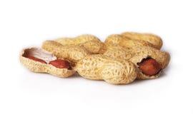 Cacahuetes en cáscara Imagenes de archivo