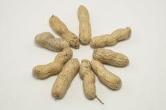 Cacahuetes, esféricos Imágenes de archivo libres de regalías