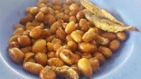 Cacahuetes fritos para el bocado Fotografía de archivo
