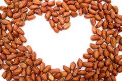 Cacahuetes rojos, cacahuetes fritos Cacahuetes en el fondo blanco Cacahuetes sin limpiar imagenes de archivo