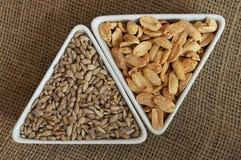 Cacahuetes y semillas de girasol fotos de archivo libres de regalías