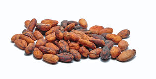 Cacao Stock Afbeelding