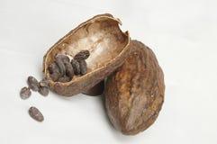 Cacao Images libres de droits
