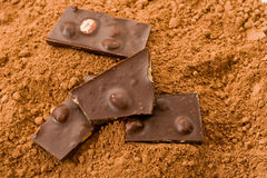 Cacao  and Stock Photo