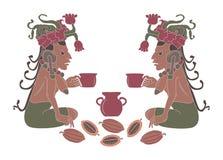 Cacao ilustración del vector