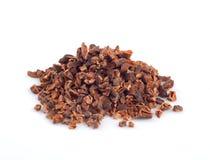 cacao fotografia stock libera da diritti