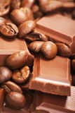 Cacao Royalty Free Stock Images