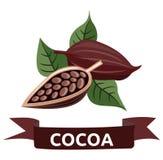 cacao Photos stock