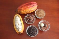 cacao Immagini Stock