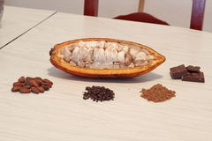 cacao Fotografie Stock Libere da Diritti