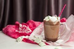 Cacao avec la guimauve Photos libres de droits
