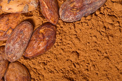Cacao baclground Royalty Free Stock Image