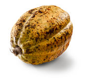 Cacao bean Stock Images