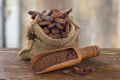 Cacao. Bean in Hessian bag next to some  powder on a wooden plank royalty free stock images
