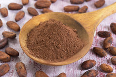 Cacao. Bean and  powder in wooden spoon royalty free stock image