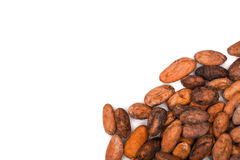 Cacao beans Stock Image