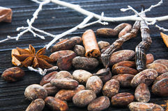 Cacao beans with anise stars, cinnamon and vanilla Royalty Free Stock Photography