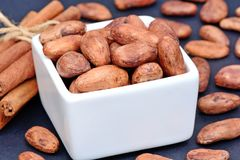 Cacao beans in a bowl with cinnamon sticks royalty free stock photo