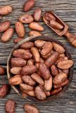 Cacao beans in a bowl on table stock image