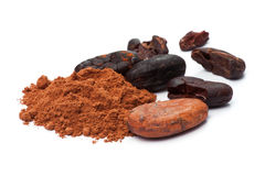 Cacao beans and cacao powder Stock Images