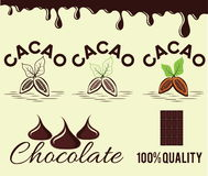 Cacao beans and chocolate Royalty Free Stock Photography