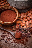 Cacao beans and cocoa powde Stock Images