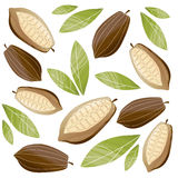 Cacao beans illustration Royalty Free Stock Photography