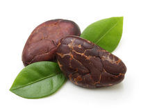 Cacao beans  isolated Royalty Free Stock Photos