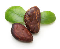 Cacao beans  isolated Royalty Free Stock Photography