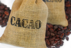 Cacao beans in jut bag with inscription cacao Royalty Free Stock Photography