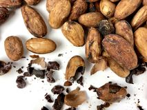 Cacao beans and nibs. On a white background stock image