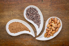 Cacao beans, nibs and powder Royalty Free Stock Image