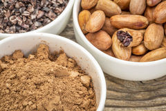 Cacao beans, nibs and powder. In white ceramic bowls against grained wood royalty free stock photos