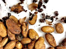 Cacao beans and nibs. On a white background stock photo